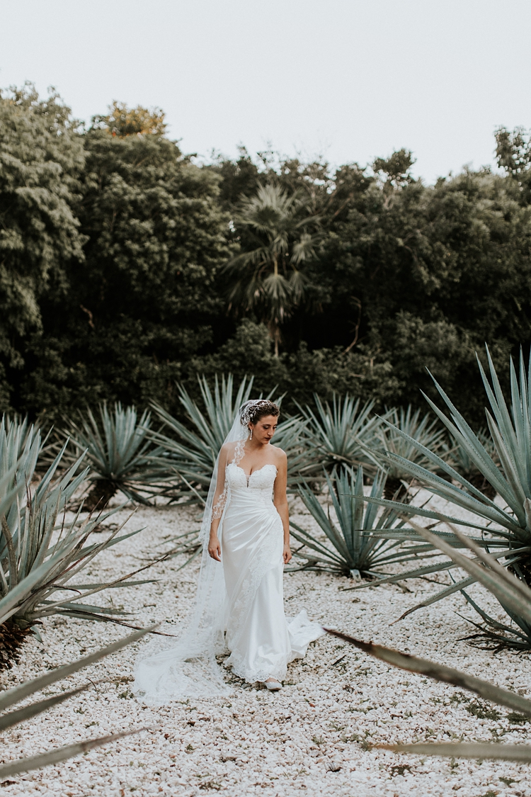 Bride walks through tequila field in Grand Palladium Colonial Resort
